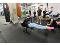 Outdoor/Indoor Calisthenics and Bodyweight 1-1 training