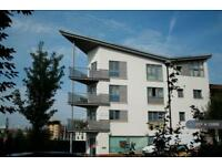 1 bedroom flat in Anvil Street, Bristol, BS2 (1 bed)