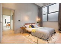 Brand new two bedroom & two bathroom warehouse style apartment, Hunts Paper Factory, Fulham