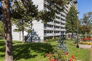 Le Faubourg de L'ile - 1 Bedroom Apartment for Rent Gatineau Ottawa / Gatineau Area image 7