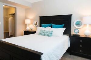 NEW Pet Friendly Two Bedroom Apartment w in-suite laundry SW EDM Edmonton Edmonton Area image 2