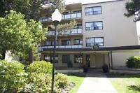 2181 Avenue Road - Bachelor Apartment for Rent