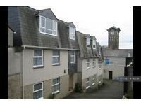 1 bedroom flat in Trewartha Court, Liskeard, PL14 (1 bed)