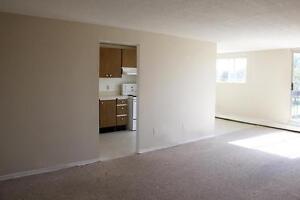 2 Bedroom Apartment for Rent in Elmira: Close to area amenities
