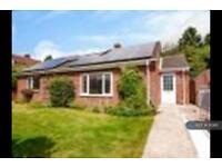 2 bedroom house in Meadow Court, South Normanton, DE55 (2 bed)