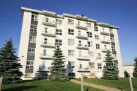 ALL UTILITIES INCLUDED--GREAT LOCATION-BALCONIES-RENOVATED