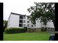 1 bedroom flat in Bothwell House, Hamilton, ML3 (1 bed)