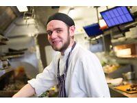 Chef - Harvester New Square