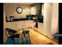 1 bedroom flat in Landor Road, Clapham North , SW9 (1 bed)