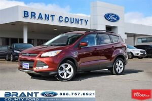 2014 Ford Escape SE - CLEAN CARPROOF, NAV, BACK UP CAMERA!