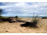 FINAL REDUCTION 4 nights from 29th Jan Dog friendly Norfolk cottage See seals WINTERTON NOT YARMOUTH