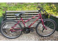 Bikes Raleigh Camaro (good condition)