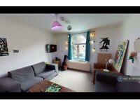 5 bedroom house in Havil Street, London, SE5 (5 bed) (#1067478)