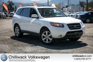2009 Hyundai Santa Fe -