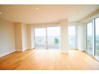!!! AMAZING PENTHOUSE FLAT WITH HUGE TERRACE FOR A 180 DEGREE VIEW OF LONDON AND PARKING SPACE !!!
