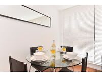 Luxurious 2bed/1bath apartment*Tower Bridge area*3 months minimum*Fully furnished*WiFi included