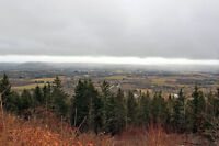 Land by Hampton Mtn Road Lookoff - for Sale - 15 Acres!