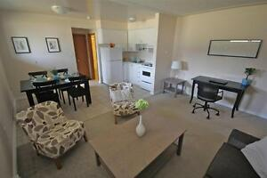 HWY 8 and Fergus Street – Beautiful 1 Bed Apartment! Kitchener / Waterloo Kitchener Area image 3