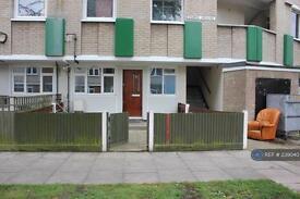 1 bedroom flat in Mace St, London, E2 (1 bed)