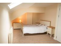 Great Price !-Newly Refurbished Room - NO deposit!
