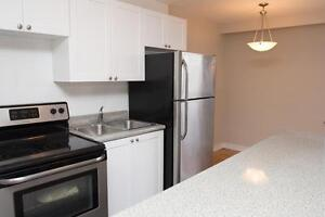 Renovated 2 Bedroom near High Park & Lake Ontario Waterfront!
