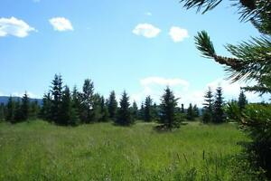 5 ACRE LOT ONLY $34,900 - VENDOR FINANCING Prince George British Columbia image 3