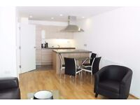 Stunning ONE bedroom in the Atrium close to Cutty Sark and Deptford DLR, parking space available.