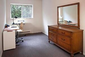 GRAND appartement à 1 chambre à louer à Hull : Gatineau, QC Gatineau Ottawa / Gatineau Area image 10