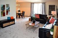 Totally Renovated – great North/East 1 BR Suite + $250 Visa GC