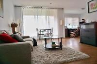 Large and Bright 3 1/2 Penthouse At McGill Ghetto Lease Transfer