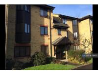 1 bedroom flat in Perrin Place, Chelmsford, CM2 (1 bed)