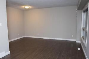 Spacious Apts for Western Students! Parking & Internet Included! London Ontario image 3