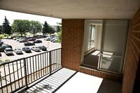 2 & 3 Bedroom Apartments in Kitchener - walk to the mall!