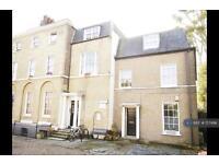 2 bedroom flat in Bruce Grove, London, N17 (2 bed)