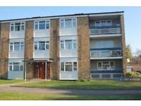 2 bedroom flat in Blewbuton Walk, Bracknell, RG12 (2 bed)