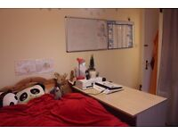 Double room available to rent in the West end