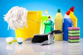 Domestic cleaner i can help you