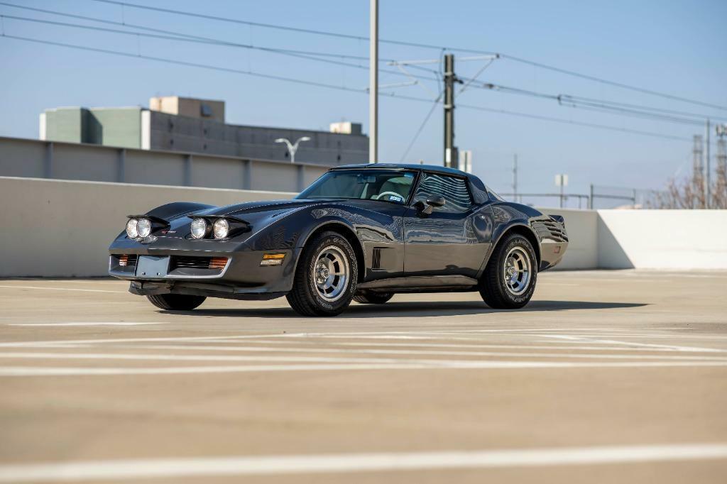 1981 Gray Chevrolet Corvette   | C3 Corvette Photo 10