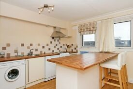 Spacious modern 2 double bedroom flat in Stockwell!!!!