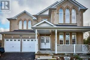 73 BLOOM AVE Clarington, Ontario
