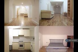 Studio flat in Westpark Road, London, UB2