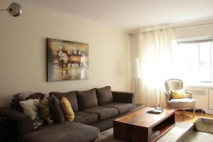 Large 1 bedroom Dowtown Montreal near Dawson College