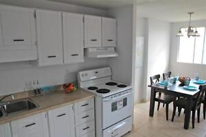 142 Woodside Avenue Apartments - 1 bedroom Apartment for Rent