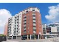 2 bedroom flat in Cypress Point, Leeds, LS2 (2 bed)