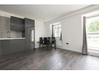Luxurious 2 bedrooms brand new penthouse in a newly built private building located in Stepney Green