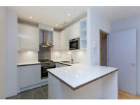 LUXURY 2 bedroom, 2 bathroom apartment with study, utility room and private garden in Islington N1