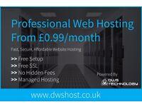 Professional Website Hosting | WordPress Hosting | Free SSL | Free Website Transfers