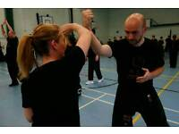 Beginners Kung Fu FREE taster session