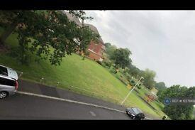 2 bedroom flat in Faringdon Road, Earley, Reading, RG6 (2 bed) (#1237669)