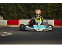 professional 2stroke racing go kart